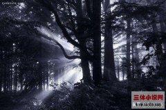 《三体》黑暗森林理论中宇宙不同文明之间的关系究竟是怎样?